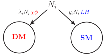A schematic of leptogenesis ADM models. Out-of-equilibrium and CP violating decays of a sterile neutrino into both the SM and DM sectors give rise to an asymmetry in both sectors. From