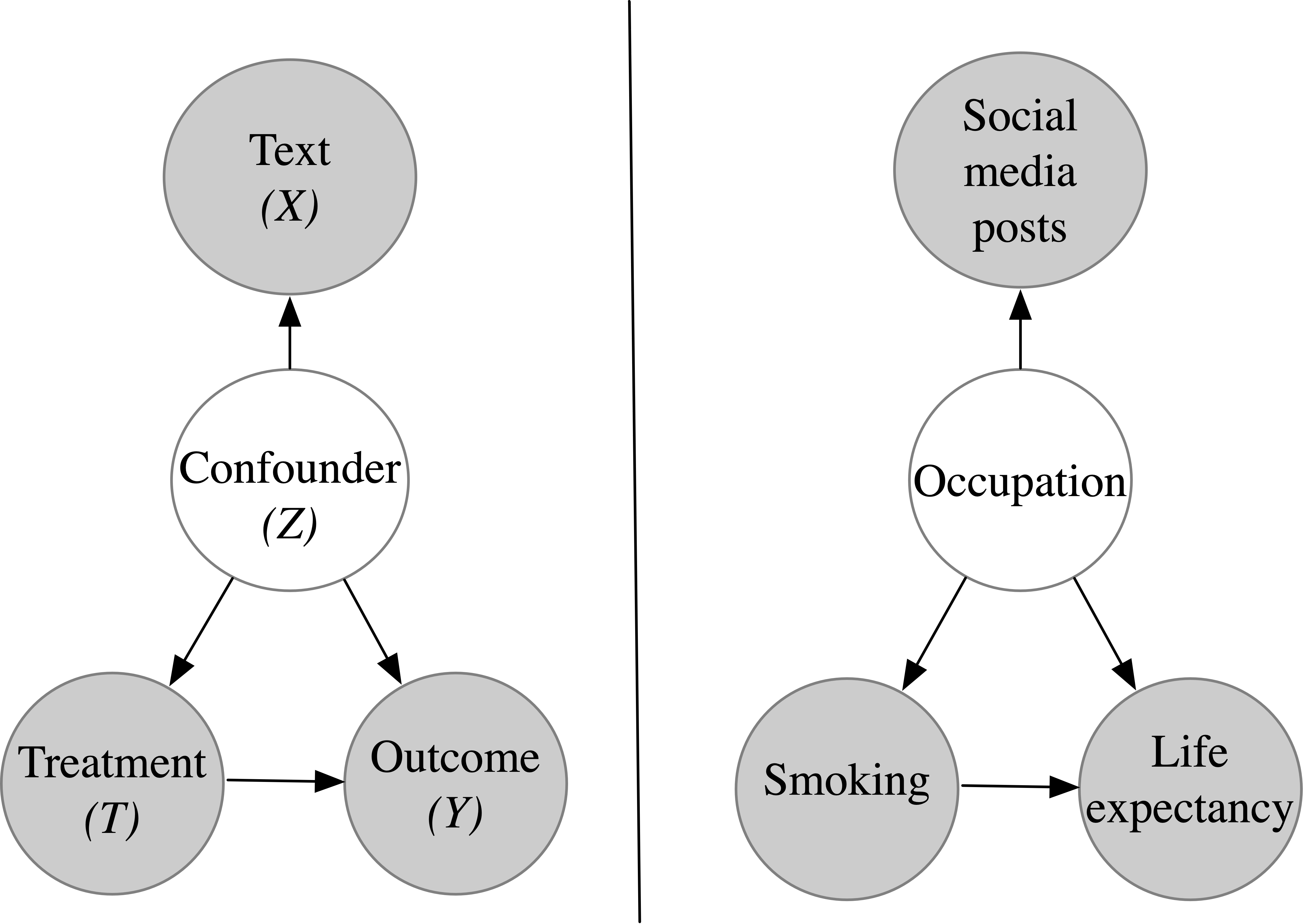 A causal diagram for text that encodes causal confounders, the setting that is focus of this review paper. The major assumption is that latent confounders can be