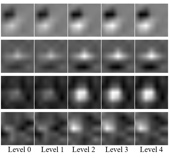 (a) Visualization of filter weights in the first layer of