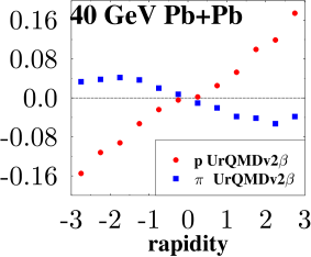 Proton and pion flow