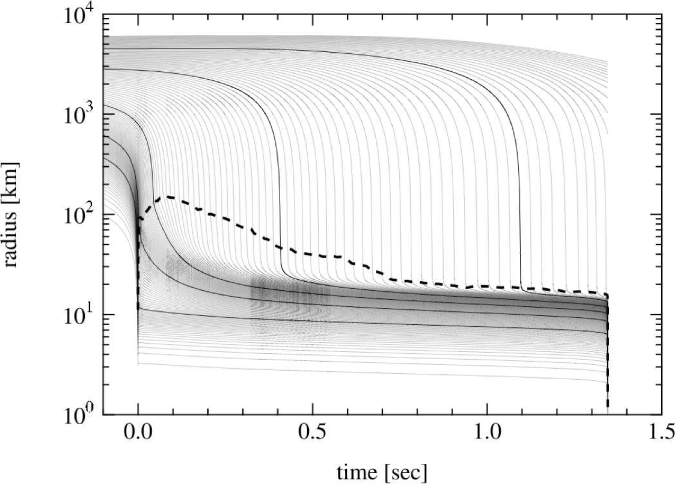 Radial trajectories of mass elements of the core of 40M