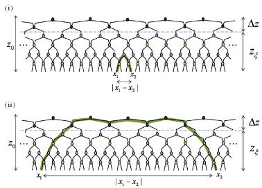(Color online) Geodesics in the finite range MERA. (i) When