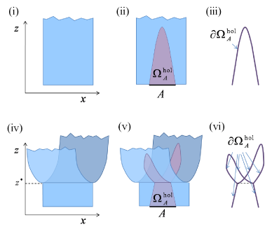 (Color online) Holographic branching in a
