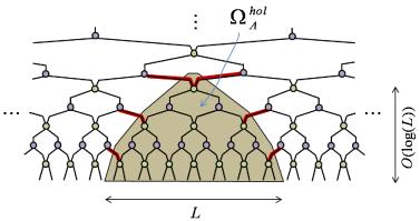 (Color online) Upper bound for the entropy