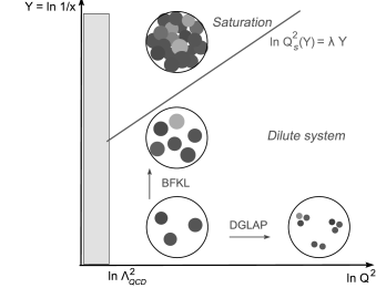 Left: lowest order description of Deep Inelastic Scattering. Right: pictorial representation of parton density function evolution in