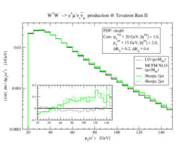 Normalized transverse momentum distribution of the