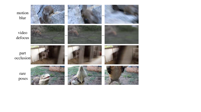 Typical deteriorated object appearance in videos.
