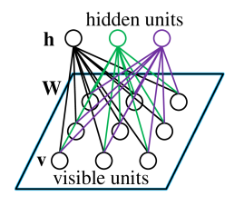 A graphical description of RBM. Note that a standard type of RBM has binary-valued visible and hidden units with weights of the connection between them. What needs to be specially emphasized is that there are none connections within visible units or hidden ones, which leads to a property that the hidden unit activations are mutually independent given the activations of visible units and conversely.