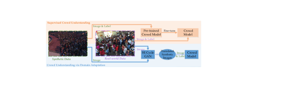 Two strategies of using the synthetic GCC dataset for pixel-wise crowd understanding: supervised learning and domain adaptation. The former firstly trains a pre-trained model on GCC and then fine-tune the model on real-world data. This strategy is able to significantly improve performance of the traditional supervise methods. The latter firstly adopts a CycleGAN-based method to translate the GCC data to photo-realistic scenes, then the trained crowd model uses the translated data and labels. The entire domain adaptation process does not need any label of real data.