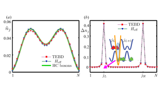 The distribution of the extra particle. The parameters used in TEBD simulation are