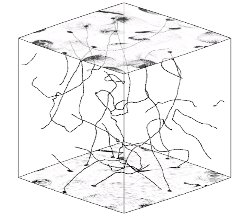A snapshot from an Abelian Higgs simulation in the matter era at a time when the horizon volume approximately fills the simulation box. The lines show the centers of the strings (found using the gauge-invariant phase-winding method of