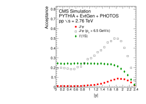 Dimuon acceptance as a function of