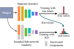 An illustration of training supernet with KD. Sub-networks are part of the supernet with weight-sharing.