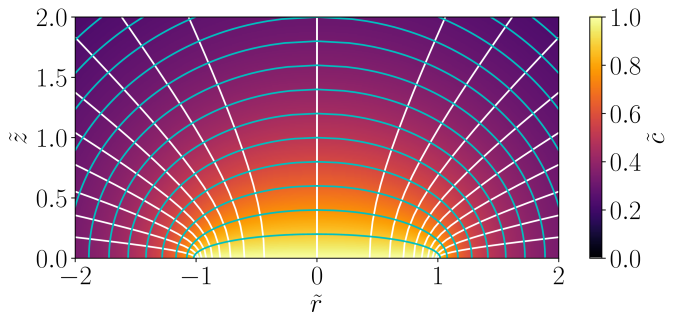 Dimensionless vapor concentration map above an evaporating disk in the dimensionless space