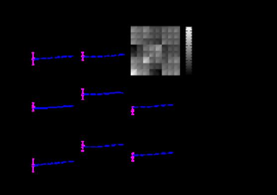 The star-galaxy cross correlation function