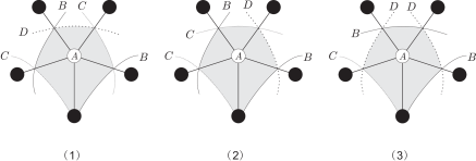 Three cases where there are two type II triangles