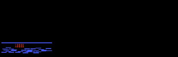 Schematic for shotgun sequencing.