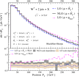 The distribution in the positron transverse momentum for