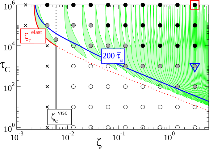 Phase diagram showing the competing effects of the activity