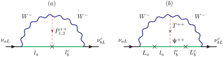 The two-loop diagram for the neutrino mass in: (a) the mass eigenbasis and (b) the weak eigenbasis.