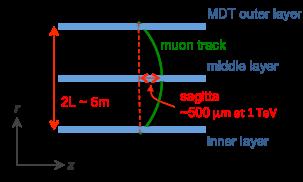 Sketch for the muon sagitta measurement in ATLAS. For a 1TeV