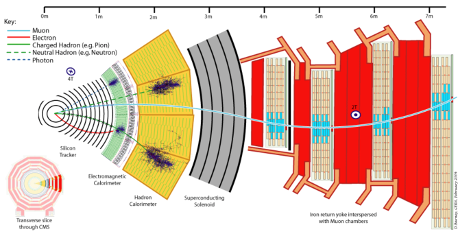 Schematic drawings of the ATLAS detector (upper) and a slice of the CMS detector (lower), showing the trajectories of charged and neutral particles interacting with the various detector layers.