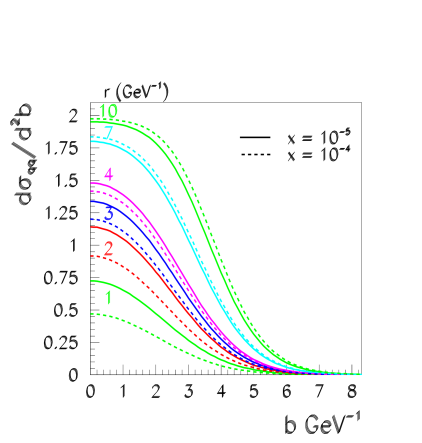 The dipole cross-section as a function of the impact parameter