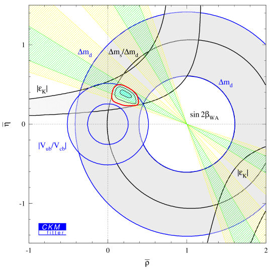 Present Standard Model constraints and the result from the global CKM fit.