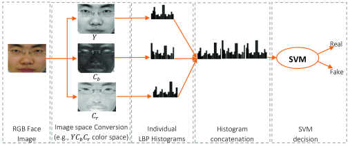 Architecture of the proposed face anti-spoofing approach