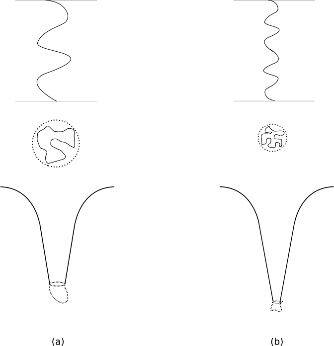 (a) The first drawing at the top depicts the NS1 string carrying a transverse vibration in a generic state; the string is opened up to its full length. Below that we draw the line traced out by this string in the noncompact directions; this curve lies in a ball shaped region given by the dotted line. Below that we sketch the geometry of the state: typical states of this type differ in the 'cap' region drawn by the dotted line, and we wish to find the area of the boundary indicated by the dotted circle. (b) The same as (a) but for a sub-ensemble of states which have shorter wavelength and smaller transverse displacements. The 'ball' is now smaller, and the throat deeper. We again wish to find the area of the boundary indicated by the dotted circle.
