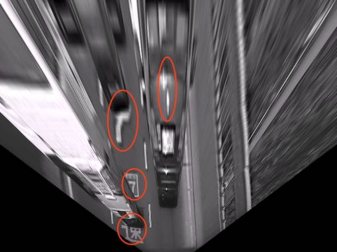 A typical IPM image of the front view of a vehicle. The red circles marks the areas that are easy to be detected as false positives.