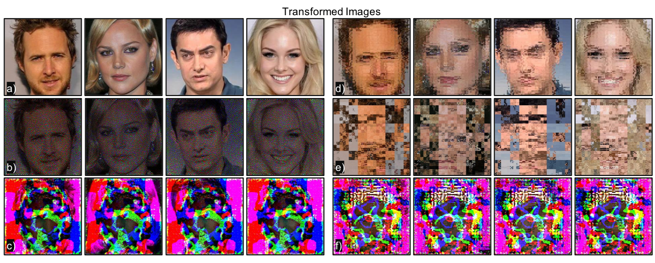 Image transformations. a) Reference images, b) Null-space learning, c) Trained-system learning, d) Geometric (permutation), low; e) Geometric (permutation), high; e) Combined geometric (low) and trained-system. Note that each transformation obscures the image differently.