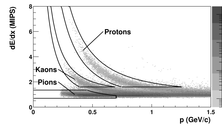 Distribution of average truncated energy loss as a function of reconstructed particle momentum. Three clear bands can be seen, corresponding to pions, kaons, and protons. The solid lines indicate the cut regions for counting identified particles.