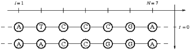 Alignment of an ancestral sequence and a present one