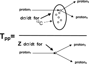 Illustration of the quantities used in the determination of nuclear transparency for a representative nucleus,