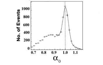 The distribution of the longitudinal component of the light cone momentum,