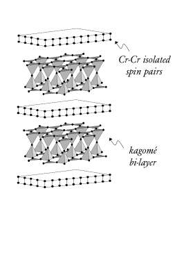 The magnetic lattice of SCGO is a stacking of kagomé bi-layers of Cr