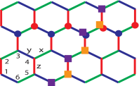 The links of a honeycomb lattice are labelled x, y, or z, depending on their orientation. Sites on a plaquette are labelled 1,..,6, as shown. Red and blue circles illustrate the path