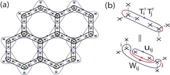 (a) The interaction terms in the Hamiltonian correspond to the three types of loops. The blue loop around each site represents the local constraint which commute with the Hamiltonian terms. (b) A loop corresponding to the interaction