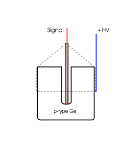 The HV and signal cables are connected on the side and central contacts of the diodes, respectively (left). The four first G