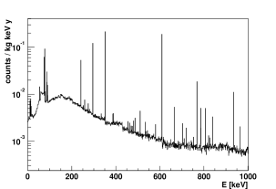 GEANT4 simulation of the background in G