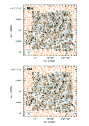 The alignment charts showing the reconstructed mosaic in the summed 5600-5680Åwavelength region for the blue arm (above) and the red arm (below). For reference, the positions of all the GAIA entries in the area are shown as orange circles.