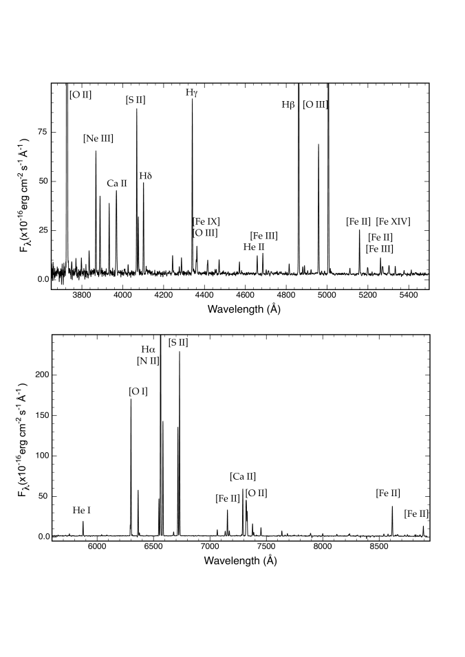 The extracted spectrum of the bright cloud P14 to show the quality of the data. Note the absence of both night sky emission lines, detectable atmospheric absorption, and underlying stellar continuum.The more prominent emission lines in the spectrum are identified according to ionic species.