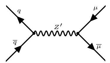 contribution to LHC di-muon resonance production.