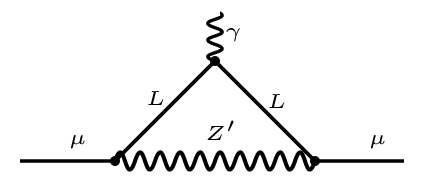 Diagrams contributing to the muon anomalous magnetic moment.