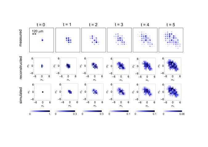 Spatial probability distributions for a quantum walk with initial condition