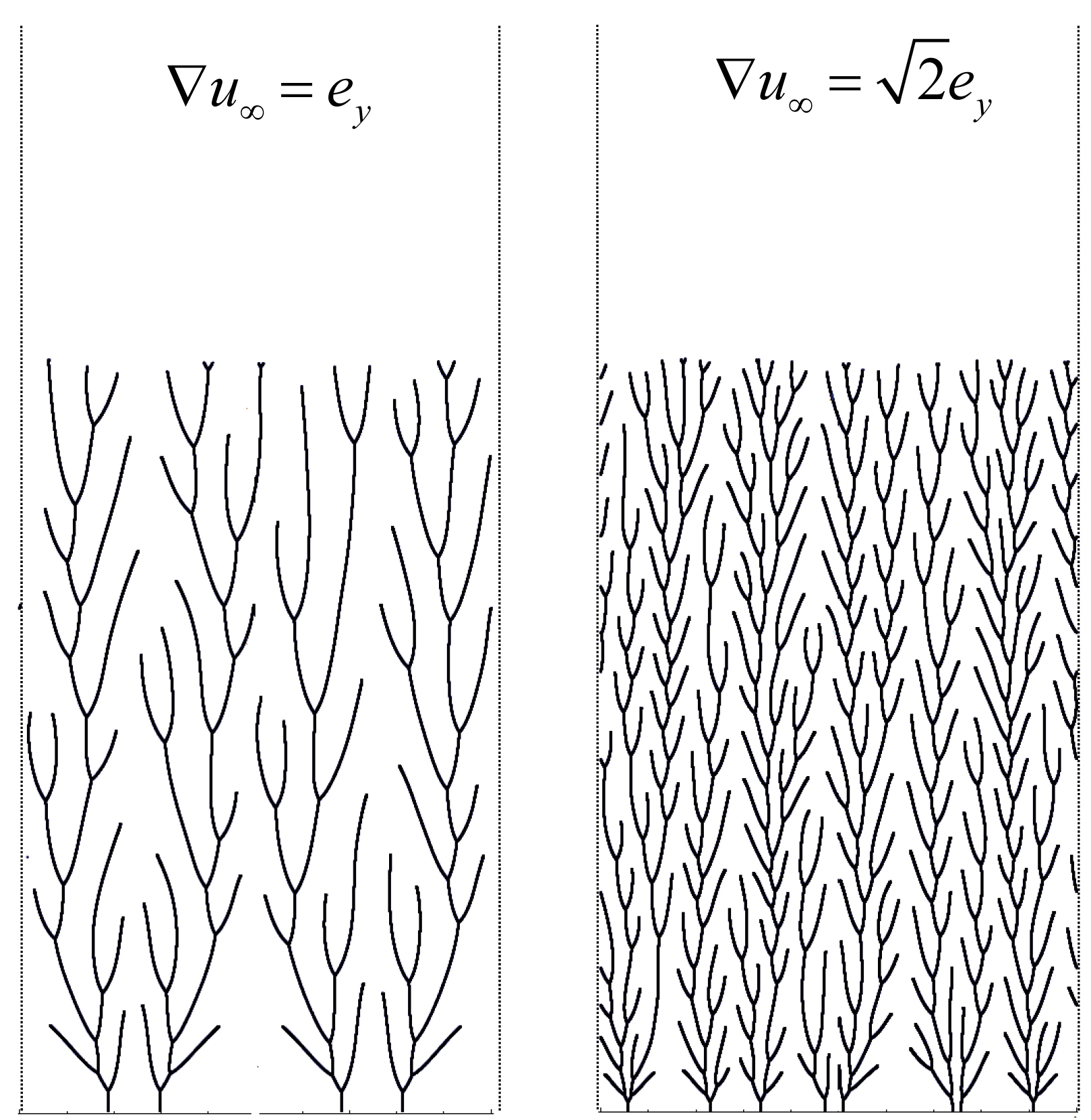 Growth patterns in a rectangular geometry for two different intensities of a driving field captured at the same moment in time. The complete evolution of the pattern is shown in a corresponding movie in the Supplementary Material
