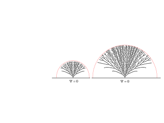 Evolution of the growing pattern in a half-plane geometry. A corresponding movie can be found in the Supplementary Material