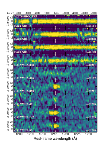 The reduced 2D spectra of luminous LAEs from our DEIMOS (