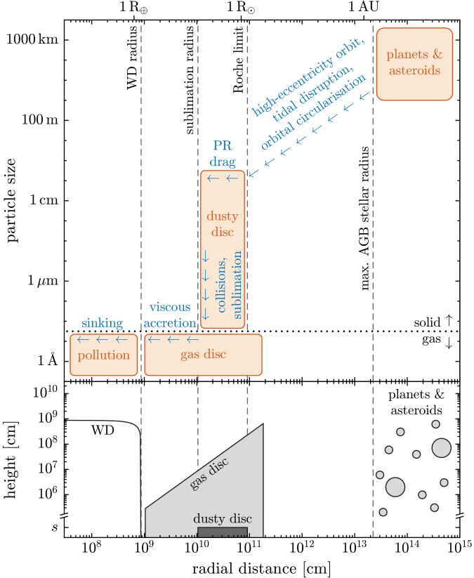 Overview of a possible model for the circumstellar environment of polluted WDs and the processes leading to rocky material reaching the star.
